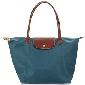 Small Longchamp Bag in Mint